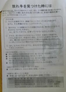 20120204blog11.jpg