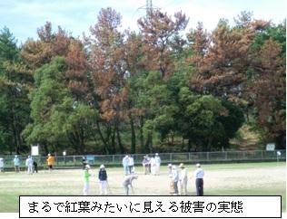 20110918blog3.jpg